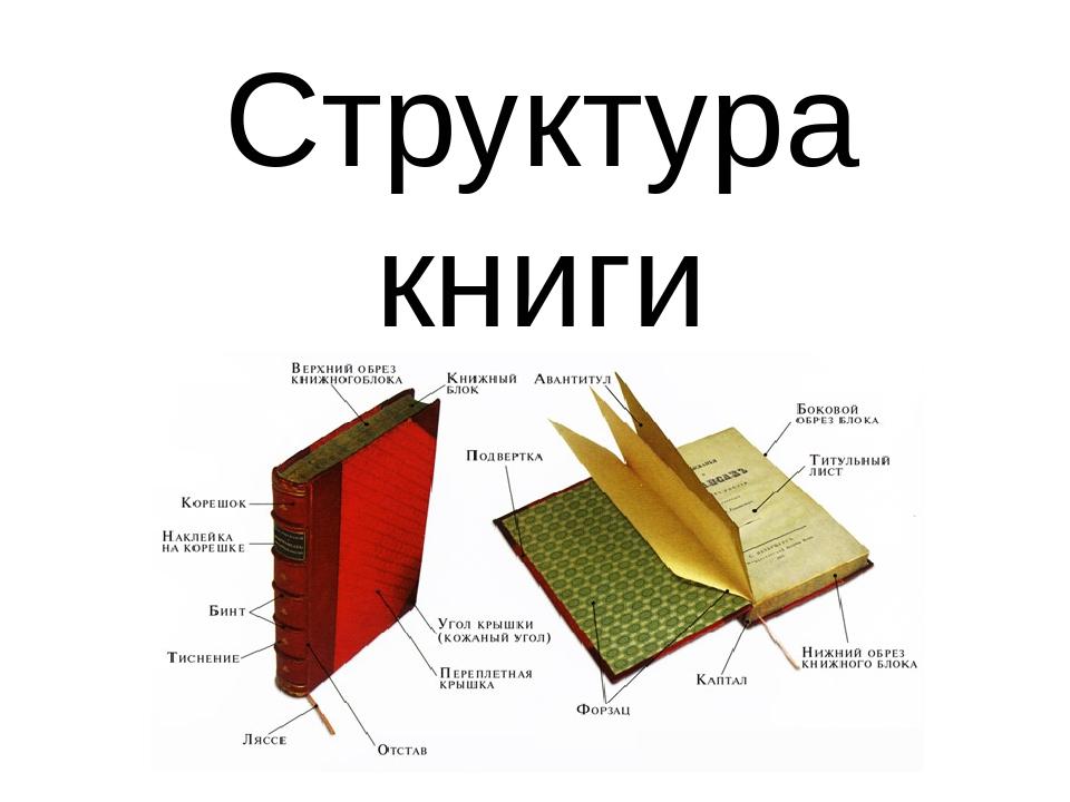 могут конструкция книги картинки это лишь