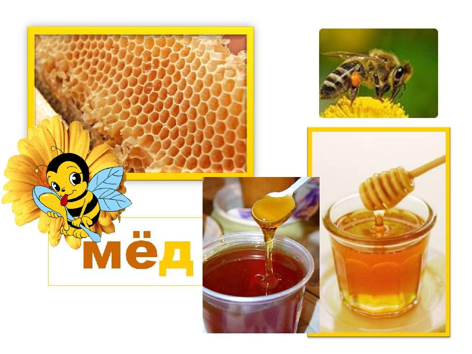 滨海边疆区蜂蜜生产商向亚洲国家总领事馆的代表展示了他们的产品