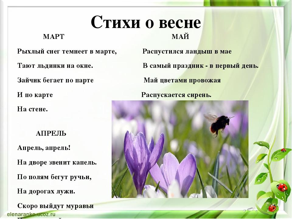 Весна картинки стихи, днем рождения сыну