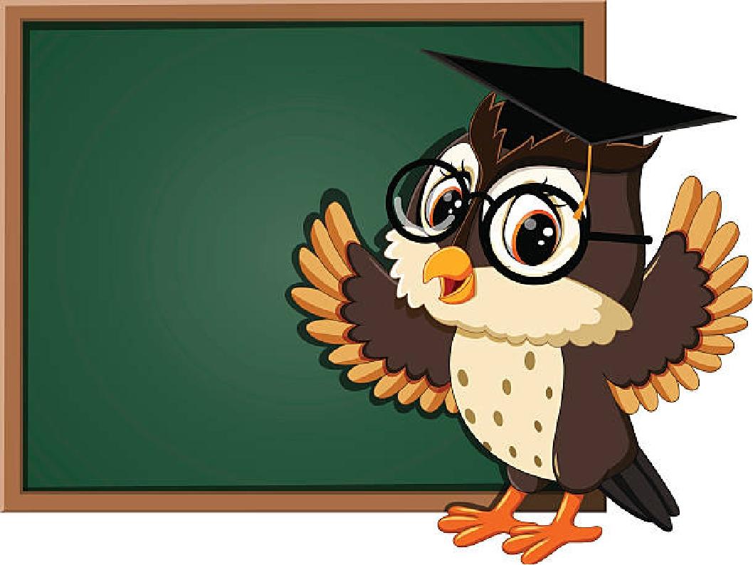 основываться картинки совы на уроках балаклава