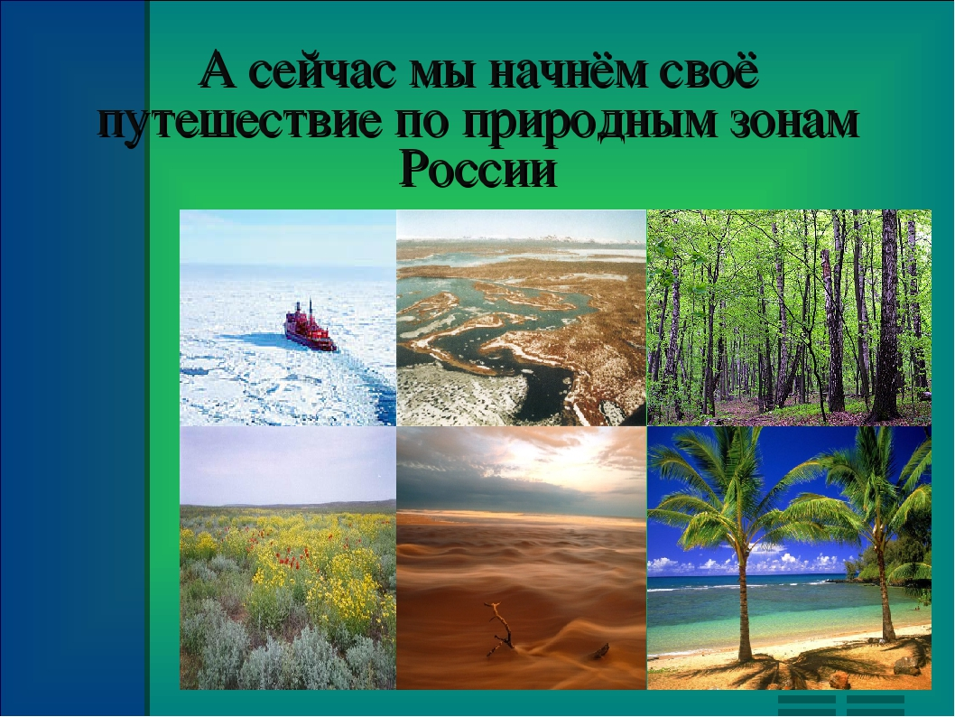Картинки по природным зонам
