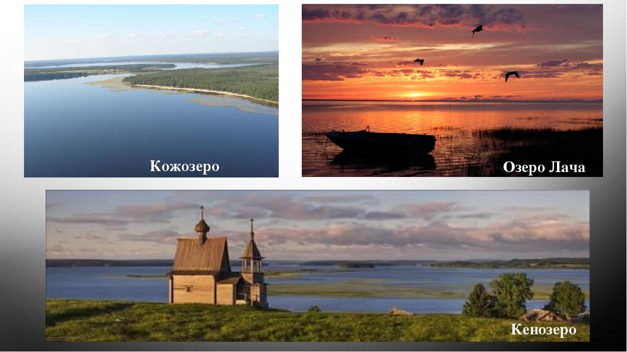 Кожозеро Озеро Лача Кенозеро