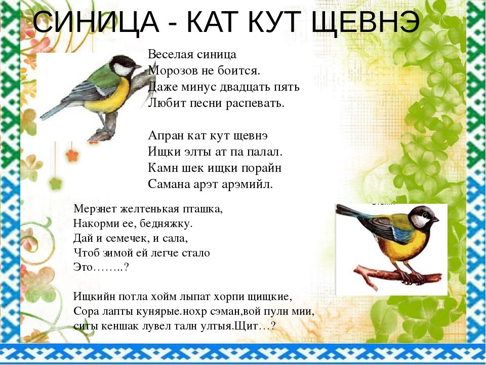 Веселая синица Морозов не боится. Даже минус двадцать пять Любит песни распев...