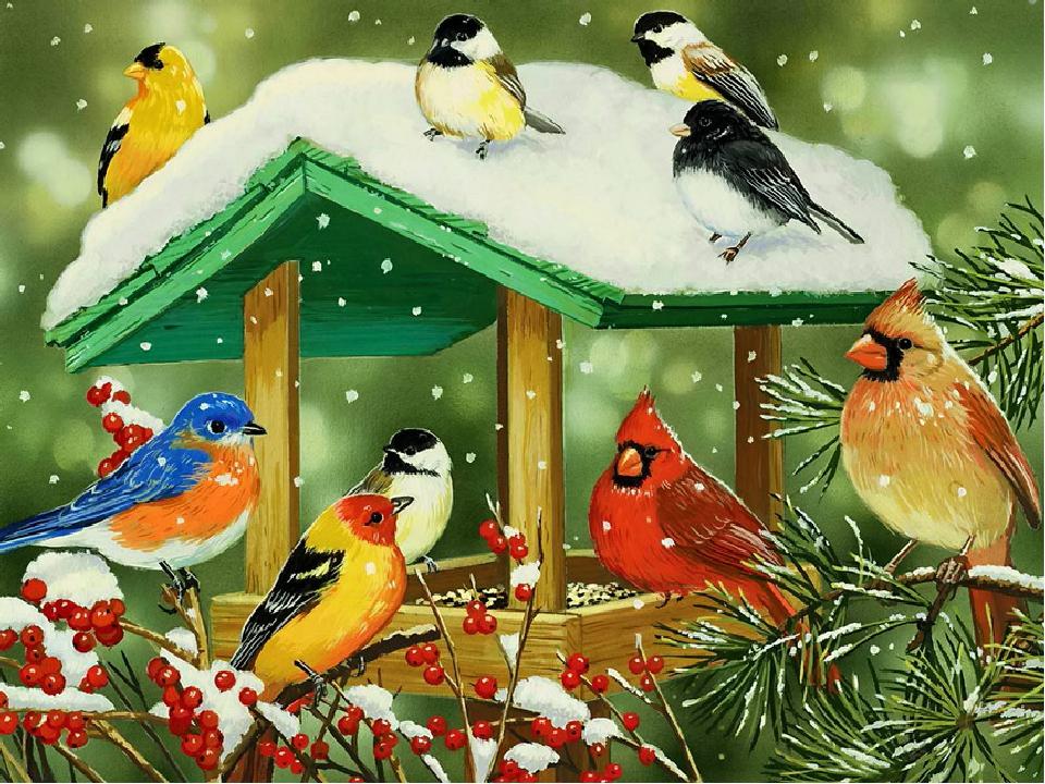 Картинки птичек зимой детские