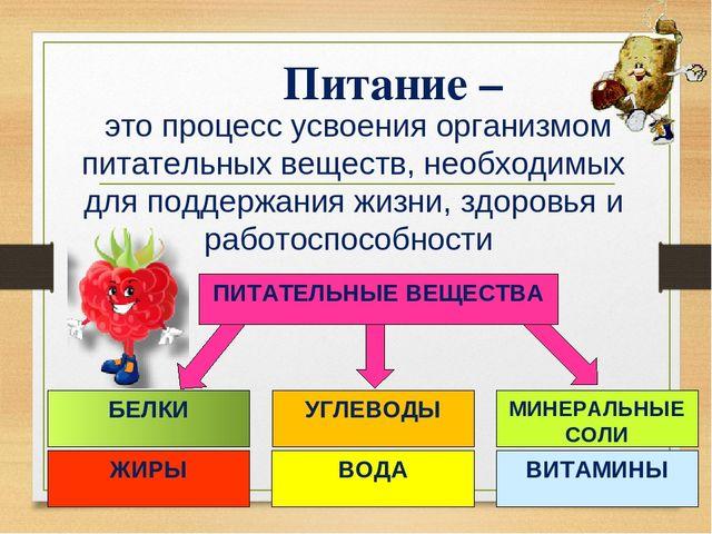 e23428233e9a это процесс усвоения организмом питательных веществ, необходимых для  поддерж.