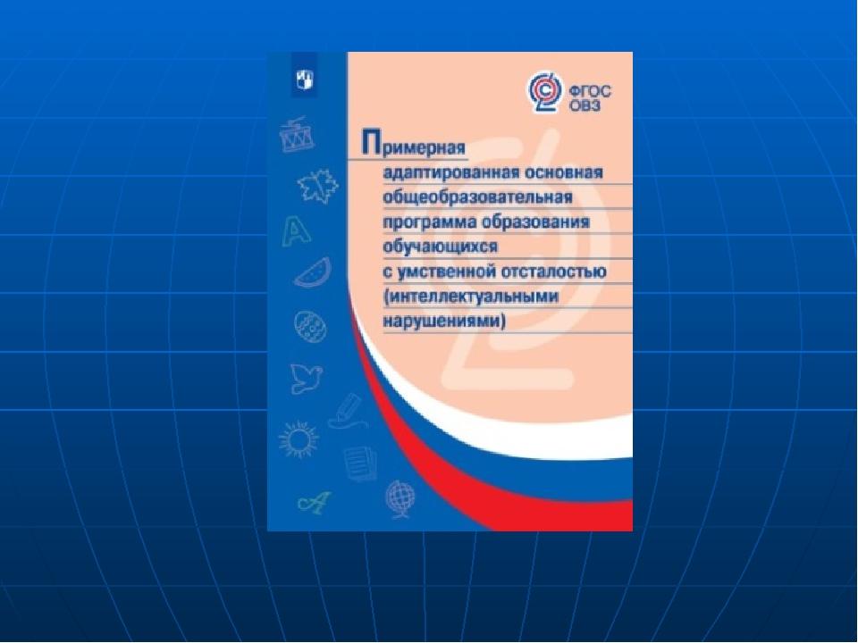 Адаптированная рабочая программа по русскому языку и литературе на 2020-2020 учебный год для детей с