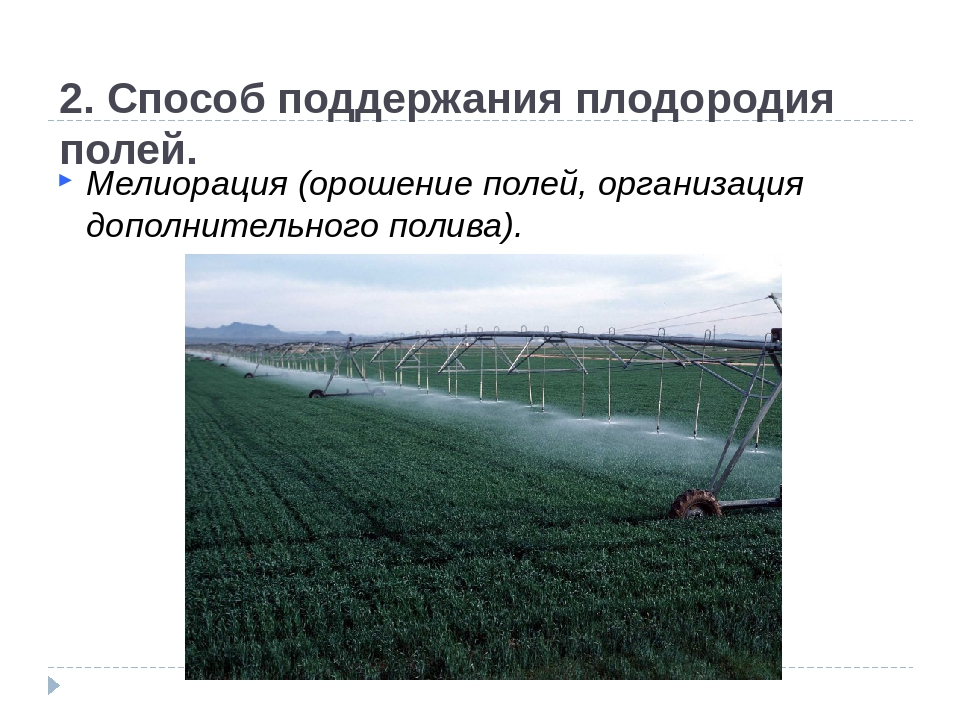 2. Способ поддержания плодородия полей. Мелиорация (орошение полей, организа...