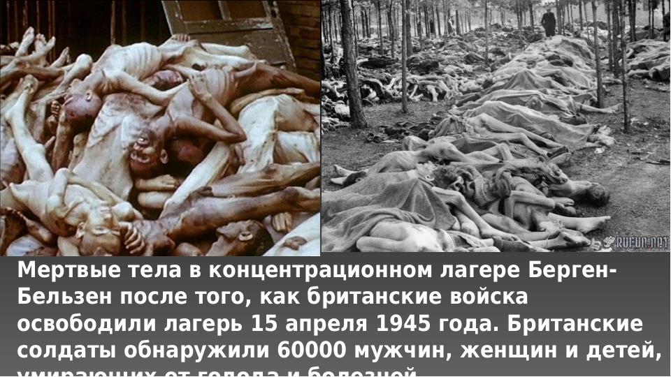 Мертвые тела в концентрационном лагере Берген-Бельзен после того, как британс...
