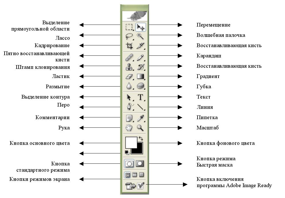 белье, название и значение инстрементов в фотошопе белье