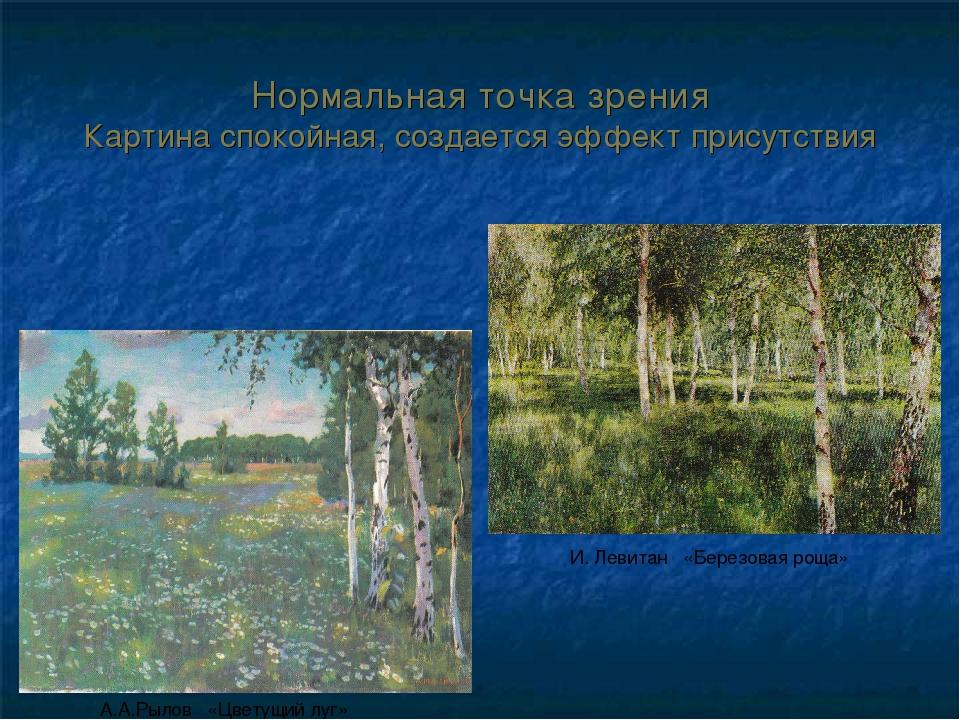 Нормальная точка зрения Картина спокойная, создается эффект присутствия А.А.Р...