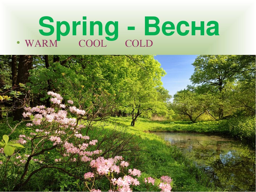 Spring - Весна WARM COOL COLD