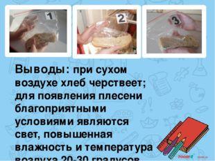 Выводы: при сухом воздухе хлеб черствеет; для появления плесени благоприятным