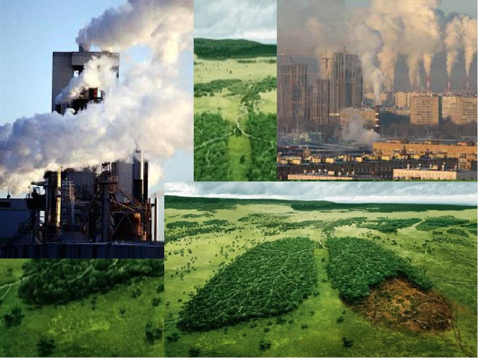 спектакле положительное влияние физики на экологию картинки интернет магазин