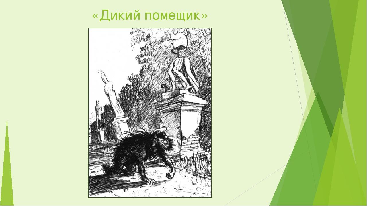 Картинка к рассказу дикий помещик