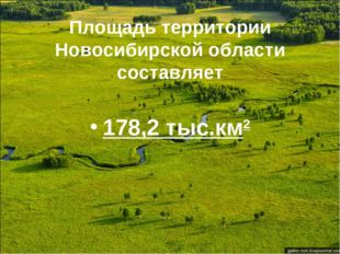 Площадь территории Новосибирской области составляет 178,2 тыс.км2