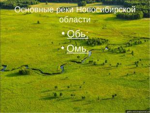Основные реки Новосибирской области Обь; Омь.