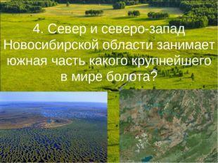 4. Север и северо-запад Новосибирской области занимает южная часть какого кру