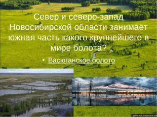 Север и северо-запад Новосибирской области занимает южная часть какого крупне