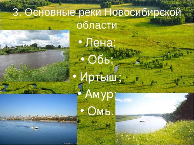 3. Основные реки Новосибирской области Лена; Обь; Иртыш; Амур; Омь.