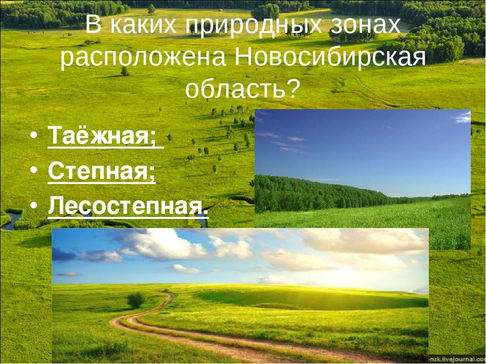 В каких природных зонах расположена Новосибирская область? Таёжная; Степная;...