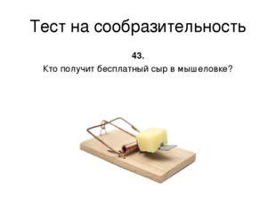 Тест на сообразительность 43. Кто получит бесплатный сыр в мышеловке?