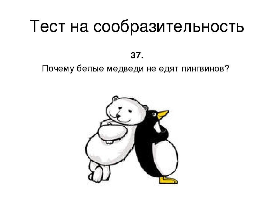 Тест на сообразительность 37. Почему белые медведи не едят пингвинов?