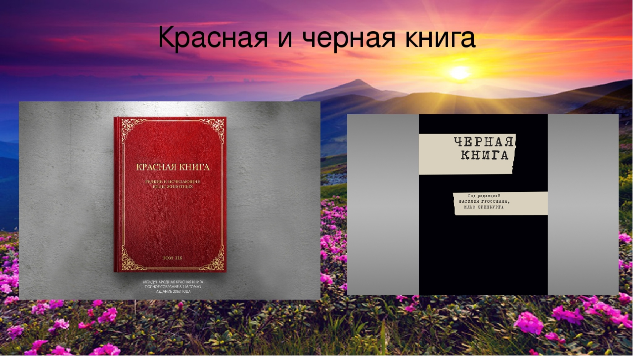 природы черная фото книга с