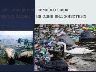 Добавьте заголовок слайда - 6 Каждый день фауна земного шара становится бедне