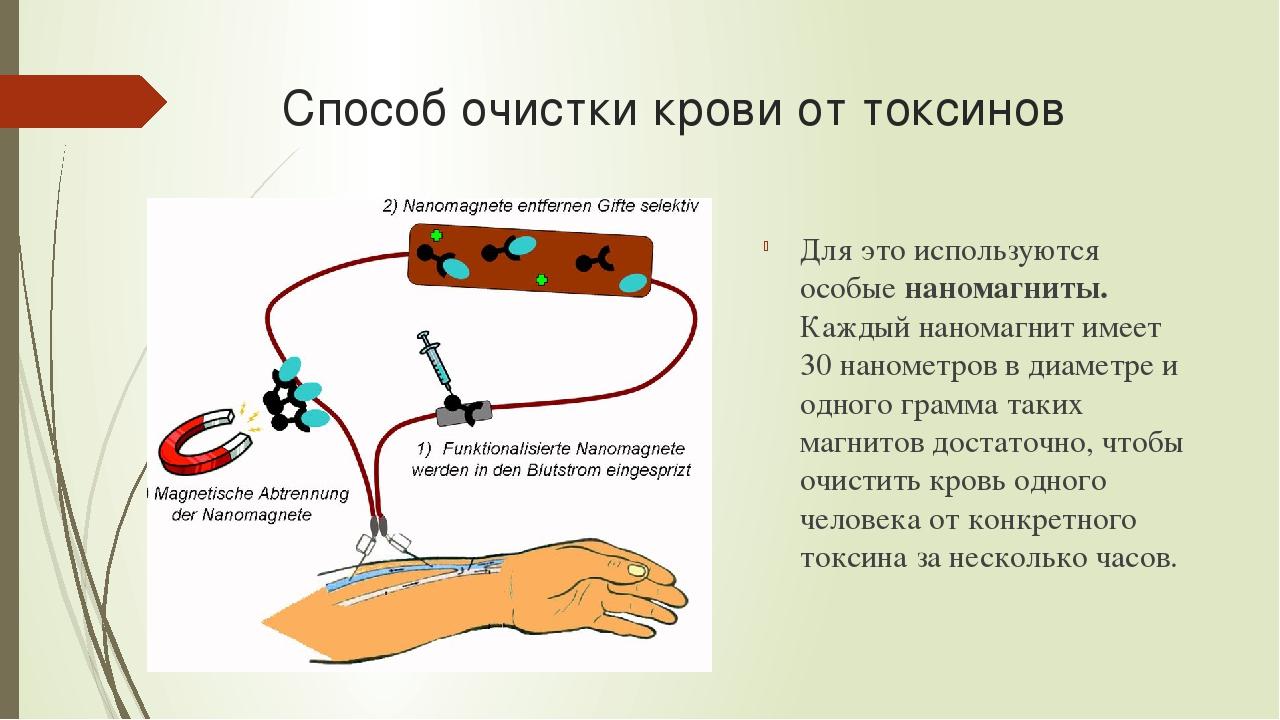 Что очищает кровь от токсинов в домашних  17