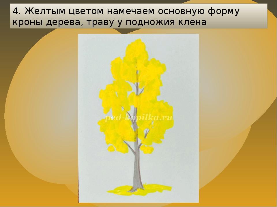 4. Желтым цветом намечаем основную форму кроны дерева, траву у подножия клена