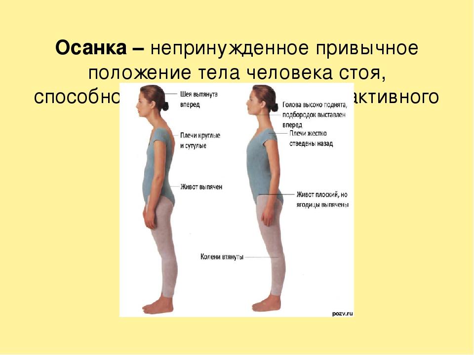 Осанка –непринужденное привычное положение тела человека стоя, способность...