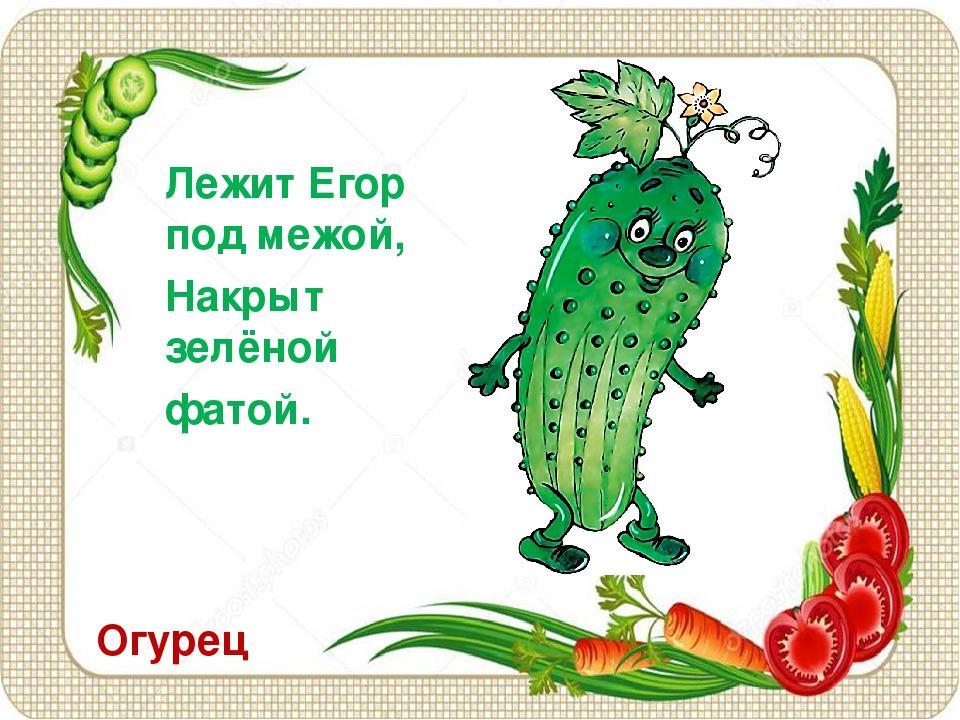 Огурец Лежит Егор под межой, Накрыт зелёной фатой.