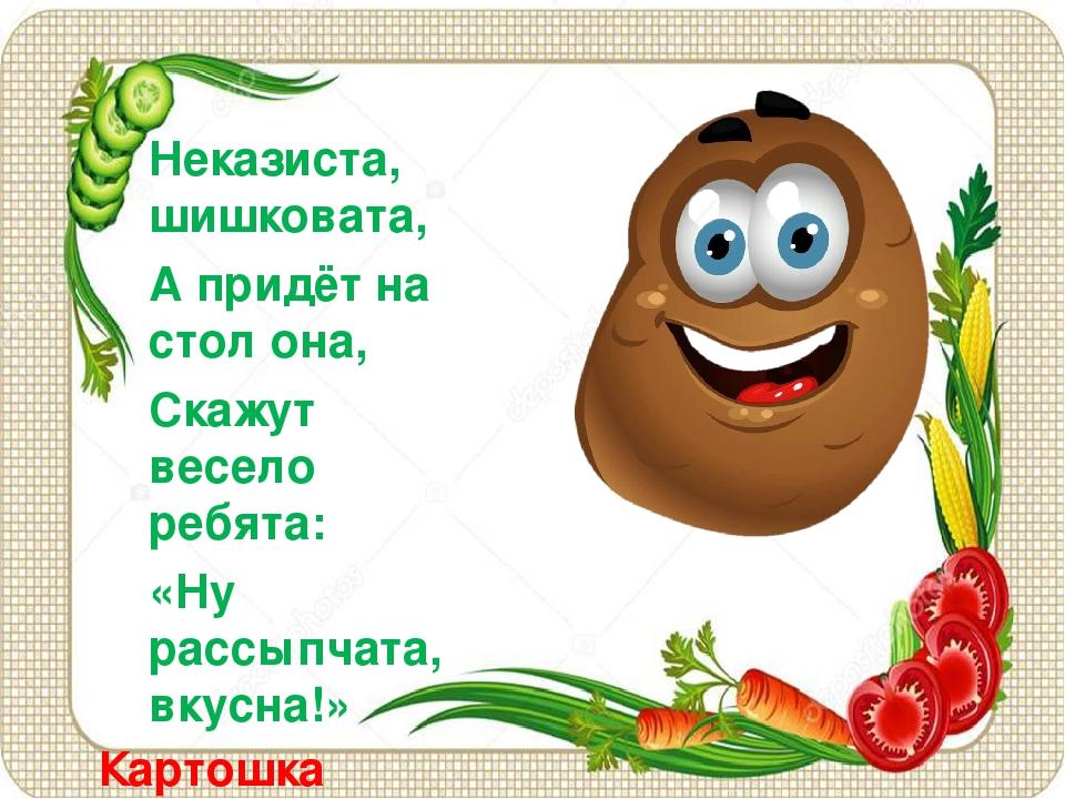 Картошка Неказиста, шишковата, А придёт на стол она, Скажут весело ребята: «...