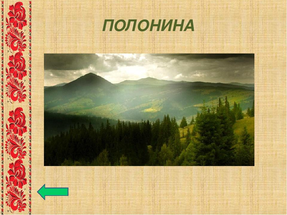 ПОЛОНИНА