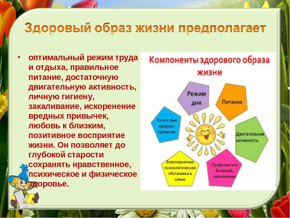 план здорового образа жизни в картинках