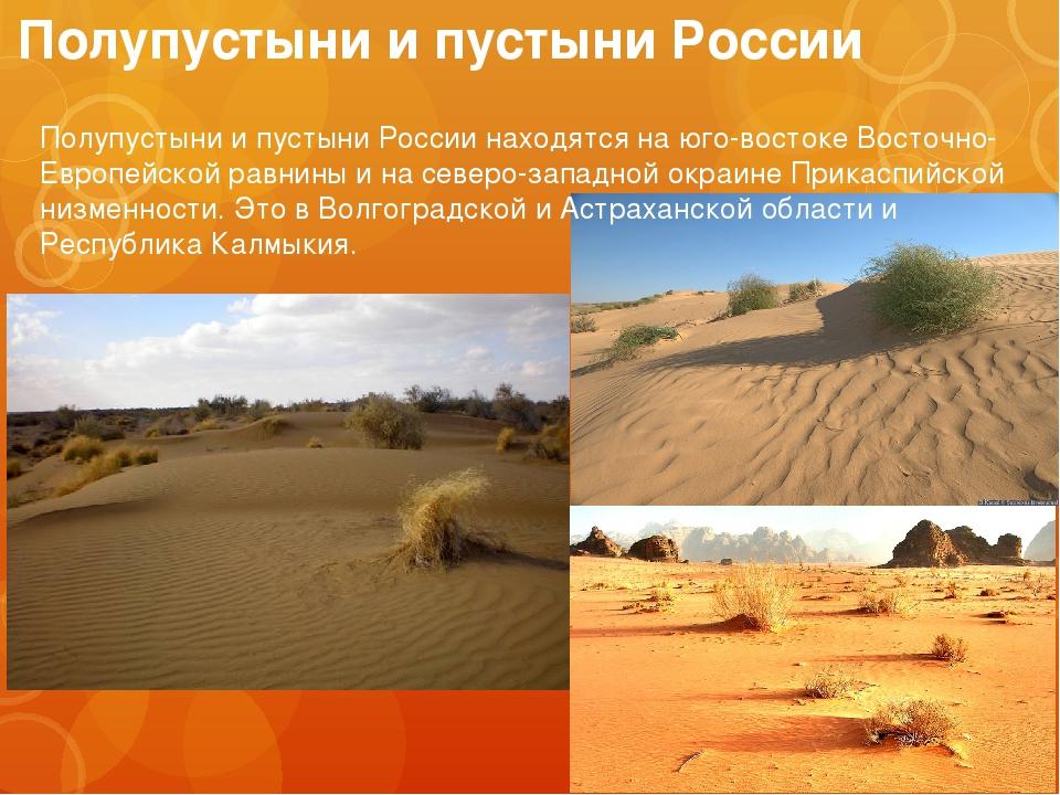 снимкам гифка в презентацию полупустыни удивительно, ведь получая