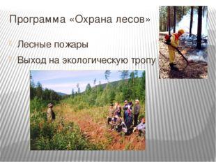 Программа «Охрана лесов» Лесные пожары Выход на экологическую тропу