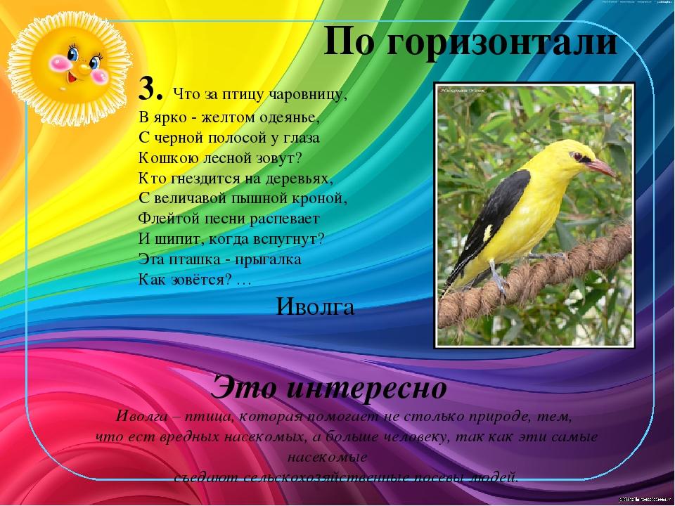 По горизонтали 3. Что за птицу чаровницу, В ярко - желтом одеянье, С черной п...