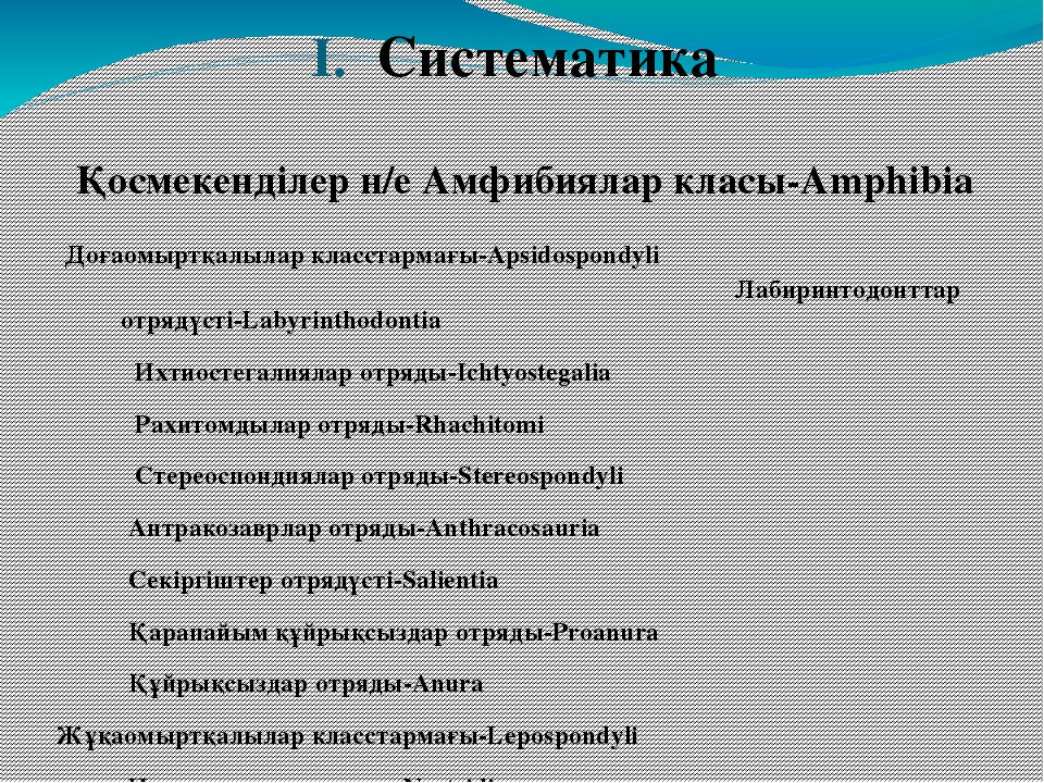 Систематика Қосмекенділер н/е Амфибиялар класы-Amphibia Доғаомыртқалылар клас...