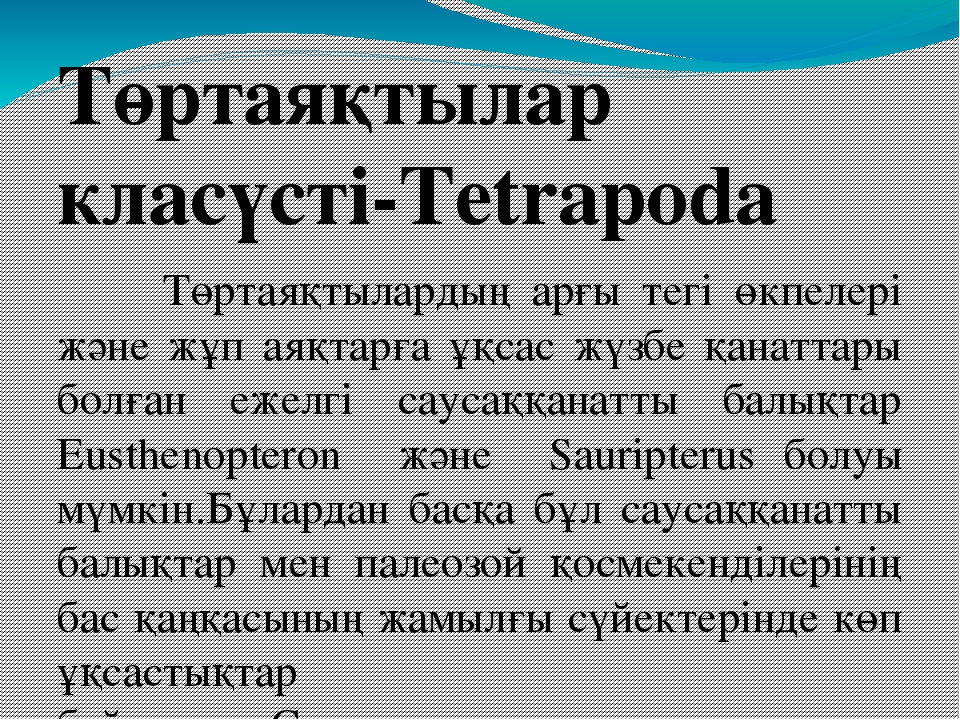 Төртаяқтылар класүсті-Tetrapoda Төртаяқтылардың арғы тегі өкпелері және жұп а...