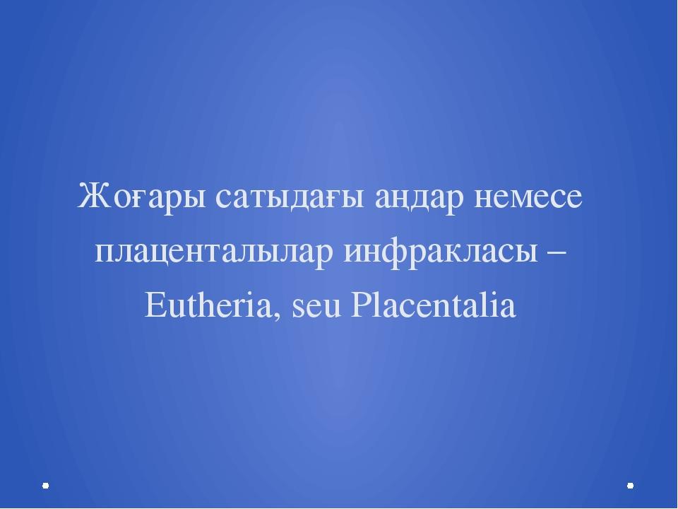 Жоғары сатыдағы аңдар немесе плаценталылар инфракласы – Eutheria, seu Placent...