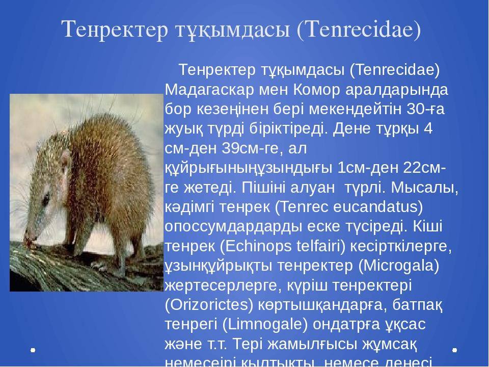 Тенректер тұқымдасы (Tenrecidae) Тенректер тұқымдасы (Tenrecidae) Мадагаскар...