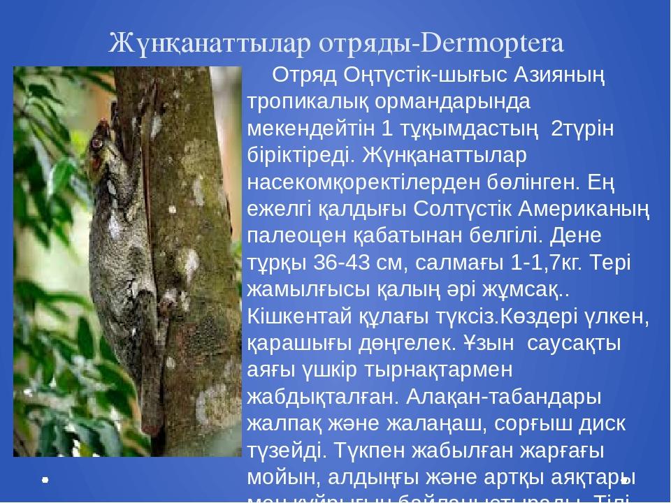 Жүнқанаттылар отряды-Dermoptera Отряд Оңтүстік-шығыс Азияның тропикалық орман...