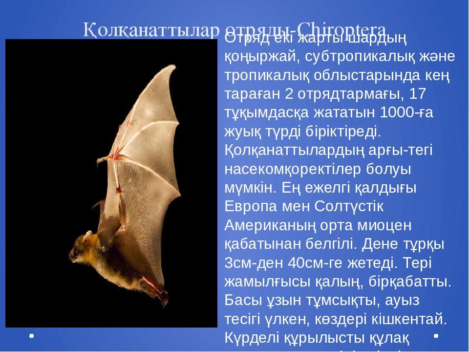 Қолқанаттылар отряды-Chiroptera Отряд екі жарты шардың қоңыржай, субтропикалы...