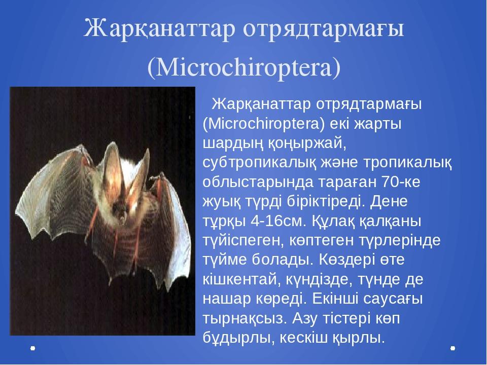 Жарқанаттар отрядтармағы (Microchiroptera) Жарқанаттар отрядтармағы (Microchi...