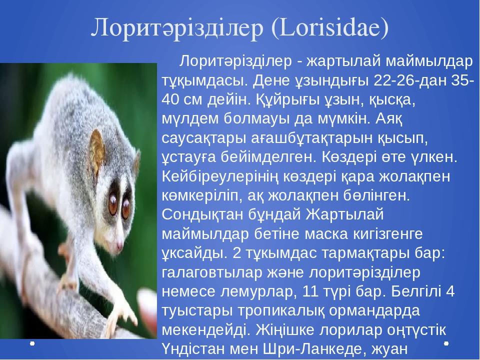 Лоритәрізділер (Lorisidae) Лоритәрізділер - жартылай маймылдар тұқымдасы. Ден...
