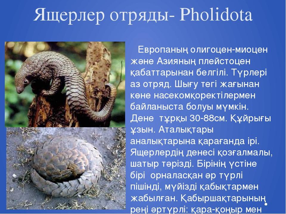 Ящерлер отряды- Pholidota Европаның олигоцен-миоцен және Азияның плейстоцен қ...