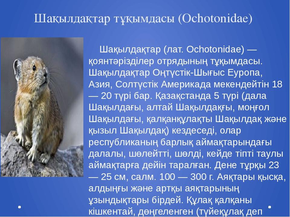 Шақылдақтар тұқымдасы (Ochotonidae) Шақылдақтар (лат. Ochotonidae) — қоянтәрі...