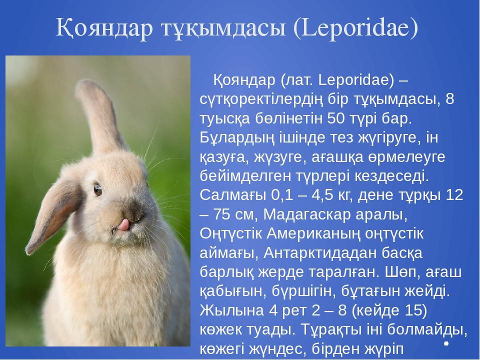 Қояндар тұқымдасы (Leporidae) Қояндар (лат. Leporidae) – сүтқоректілердің бір...