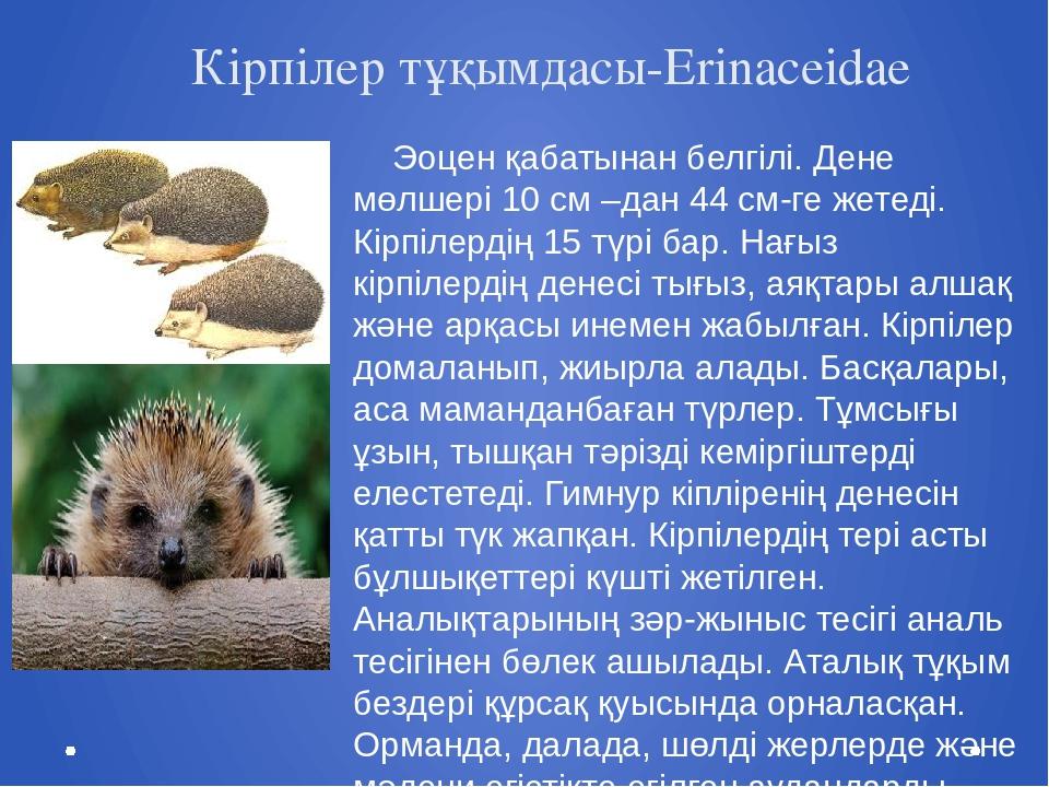 Кірпілер тұқымдасы-Erinaceidae Эоцен қабатынан белгілі. Дене мөлшері 10 см –...